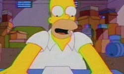 Watch the simpsons season 10 episode 2 the wizard of for Watch terrace house season 2